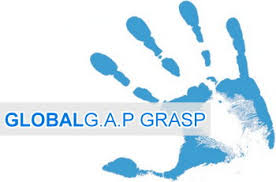 CL_GRASP